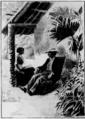 Verne - Le Superbe Orénoque, Hetzel, 1898, Ill. page 442.png