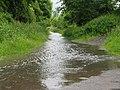 Very wet Trans Pennine Trail - geograph.org.uk - 1341387.jpg