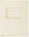 Vespertilio pipistrellus - 1700-1880 - Print - Iconographia Zoologica - Special Collections University of Amsterdam - UBA01 IZ20800173.tif