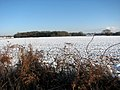 View across snowy field - geograph.org.uk - 1630572.jpg