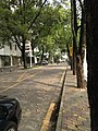 View in Nanshan, Shenzhen, Guangdong 10.jpg