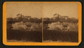 View of a house, from Robert N. Dennis collection of stereoscopic views.png