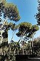 Villa Borghese 88.jpg