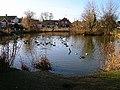 Village pond, Westham - geograph.org.uk - 109469.jpg