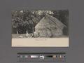 Village scene-Fiji (NYPL Hades-2359174-4043530).tiff