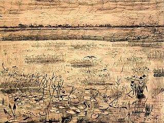 Marsh with Water Lilies