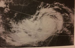 1969 Pacific typhoon season - Image: Viola July 261969
