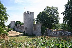 Picture of the Visby city wall, near the North gate.