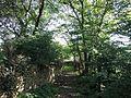 Vlachovo Březí, židovský hřbitov, cesta 01.jpg
