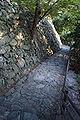 Wakayama castle10s3200.jpg