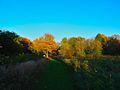 Warner Park - panoramio (65).jpg