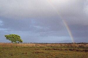 Wasur National Park - Image: Wasur Rainbow 1994