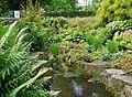 Water garden in Lister Park (2575350259).jpg