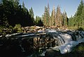 Waterfall and Logs, Rogue River-Siskiyou National Forest (36275283334).jpg