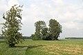 Weiher Schafwasen 03.jpg