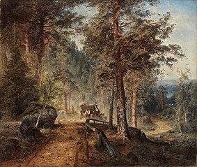 Road in Häme