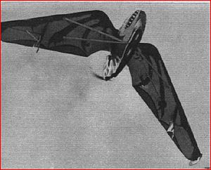 Westland-Hill Pterodactyl - Pterodactyl 1A pictured from below (Flight 1928) - note the reptile-like paint scheme