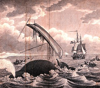 Whaling in the United Kingdom