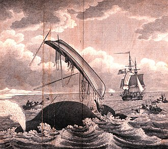 Whaling in the United Kingdom - Dangers of the Whale Fishery, 1820. One whaleboat is up-ended, and another has a taut line, showing that the whale it harpooned may take the sailors on a Nantucket sleighride