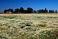 Whitehorse Ranch (Harney County, Oregon scenic images) (harDA0122).jpg
