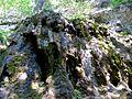 WikiProjekt Landstreicher Wasserfall Hinang 23.jpg