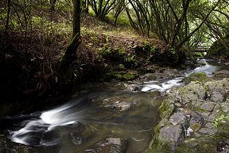 Wildcat Creek (California) - Wildcat Creek in 2011