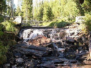 Fremont–Winema National Forest - A creek in the Winema National Forest