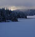 Winter sun -1 (3071305334).jpg