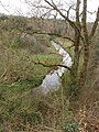 Wooded bank of River Sow near Castelsow - geograph.org.uk - 1294448.jpg