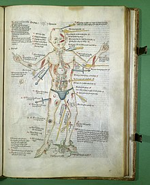 The Wound Man from a manuscript made in Germany probably around 1420 (London, Wellcome Library MS 49)