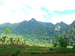 Thanh Sơn District District in Northeast, Vietnam