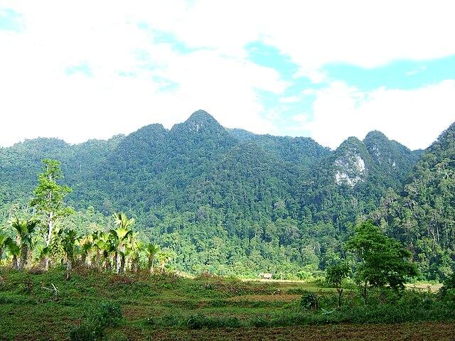 Xuan Son National Park