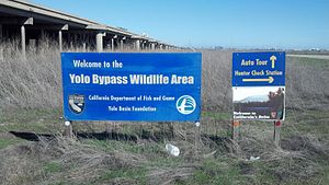 Yolo Bypass Wildlife Area - The entrance to the Yolo Bypass Wildlife Area with the Yolo Causeway to the left.