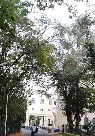 Maharaja's College, Mysore - Yuvarajas College is part of Maharajas College