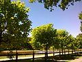 Yvelines La Boissiere-Ecole La Butte Ronde 23082016 - panoramio - rene boulay (1).jpg
