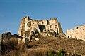 Zamek Kamieniec 2010 01.jpg