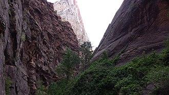 Zion Canyon - The Zion Narrows