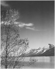 """Grand Teton"" National Park, Wyoming. (vertical orientation), 1933 - 1942 - NARA - 519906.tif"