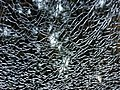 'broken glass.jpg