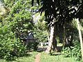 Île aux Nattes - 2006 - 14.JPG