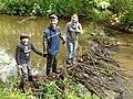 Бобровая плотина на речке Шеньга.jpg