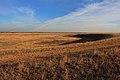 Вид в юго-восточном направлении - panoramio (3).jpg