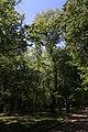 Голосіївський парк ім. М.Рильського IMG 3489.jpg
