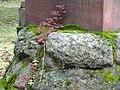 Детали надгробного камня историка Н.А. Полевого.jpg