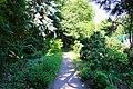 Київ, Ботанічний сад Національного аграрного університету.jpg