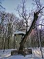 Кочубеївські Дуби у Регіональному ландшафтному парку «Диканський» 11.jpg