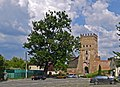 Лесин ясен біля замку Любарта (Луцьк) P1070909.jpg