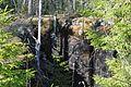 Линия Маннергейма - panoramio (9).jpg