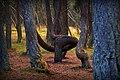 Национальный парк Куршская коса.jpg