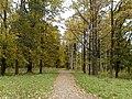 Осень в Дворцовом парке Гатчины - panoramio (1).jpg